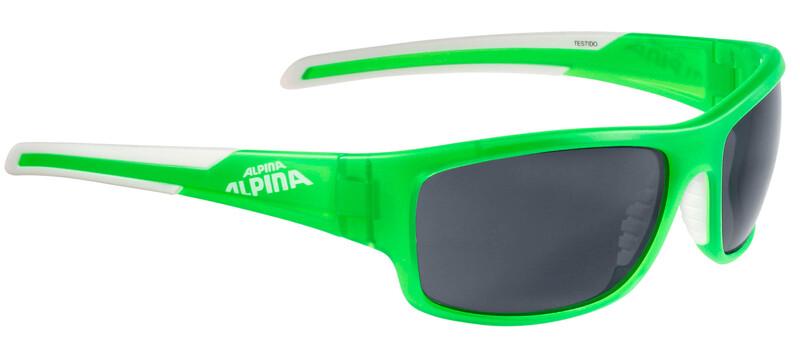 Testido P Brille green matt-white/polarisation black Accessories