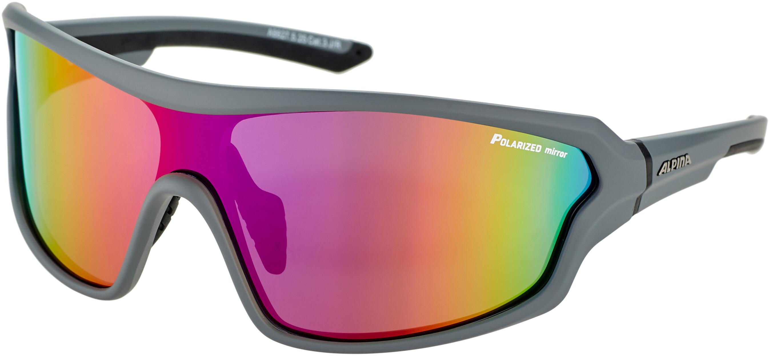 Alpina Lyron Shield P Glasses Grey Matt Black Purple Mirror At Addnature Co Uk