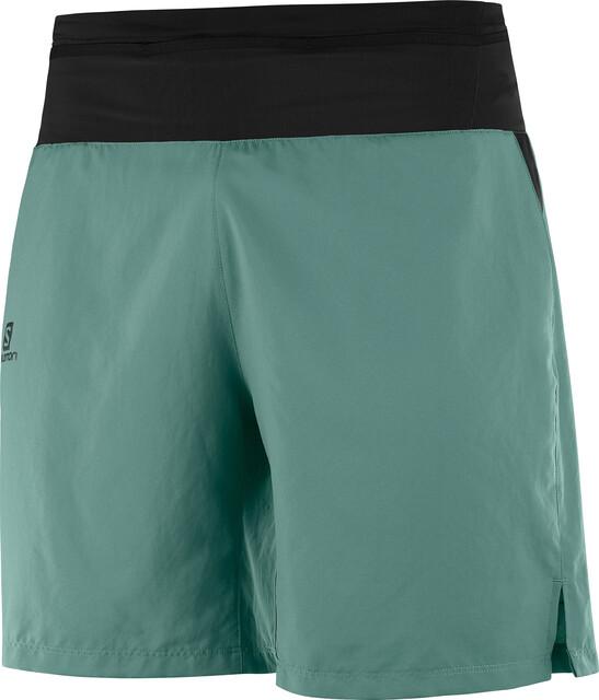 SALOMON Herren Sport-Shorts Xa Training Short M