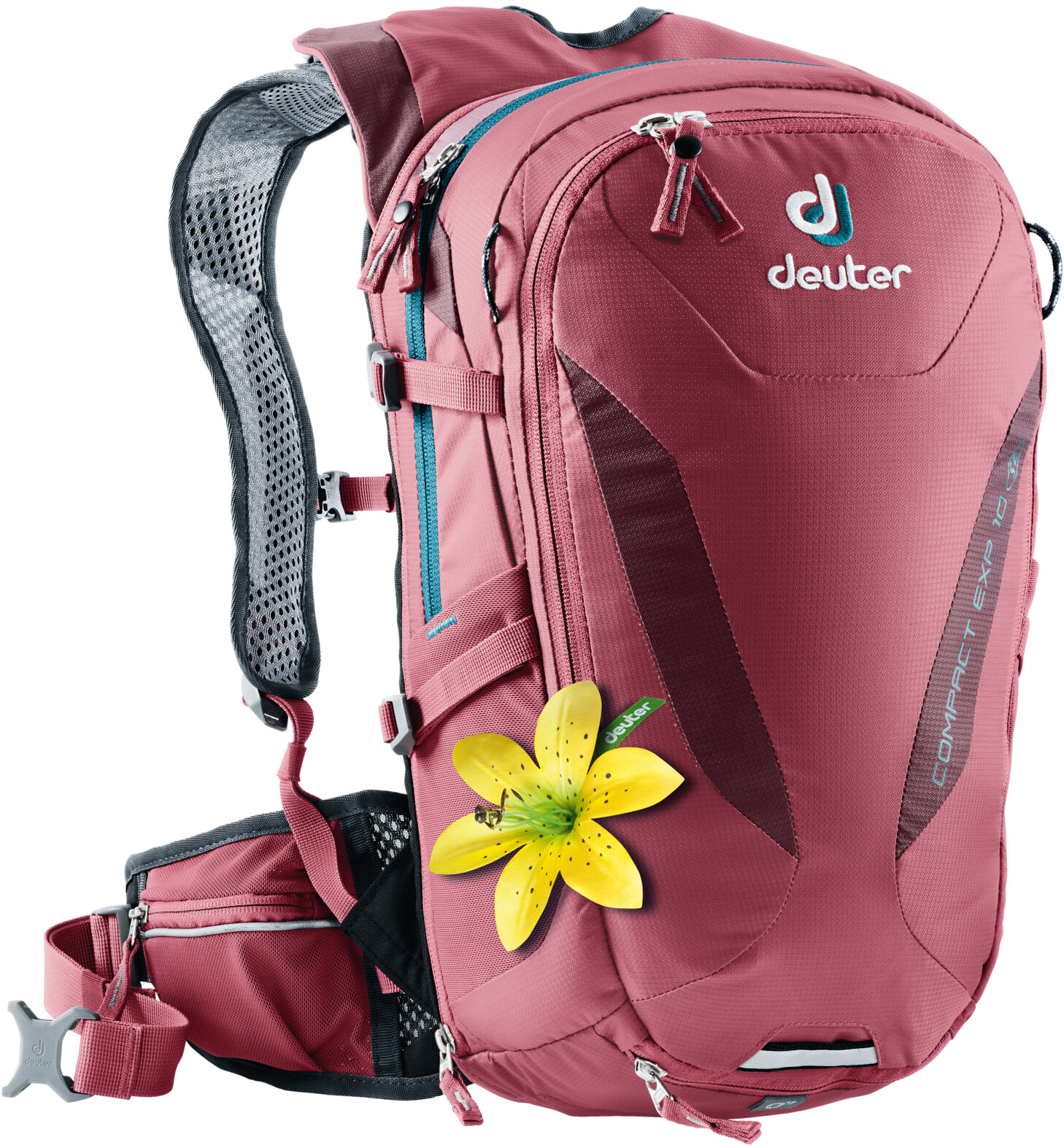 Deuter Compact EXP 10 SL Rygsæk Damer, cardinal-maron (2019)   Travel bags