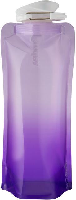 Frasco SALEWA Trinkflasche Hiker Bottle