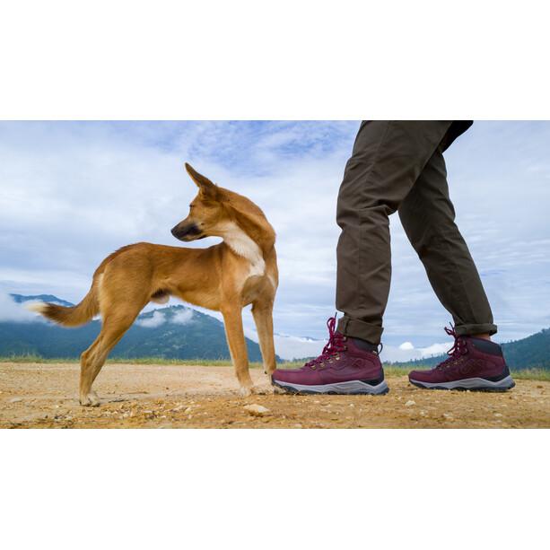 Keen Innate WP Leather Mid Shoes Dam Burgundy/Shark