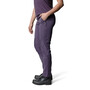 Houdini Motion Pants Dam Prince Purple