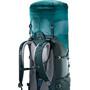 Deuter Aircontact Lite 50 + 10 Rucksack alpinegreen/forest
