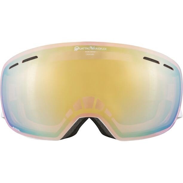 Alpina Granby QVM Brille white/lightgold