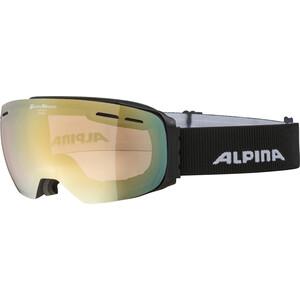 Alpina Granby QVM Goggles, zwart zwart