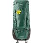Deuter Aircontact Pro 55 + 15 SL Rucksack Damen grün
