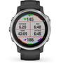 Garmin Fenix 6S Smartwatch black/silver