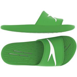 speedo Slipper Herren light green light green