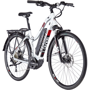 HAIBIKE SDURO Trekking 2.0 Naiset, silver/black/red silver/black/red