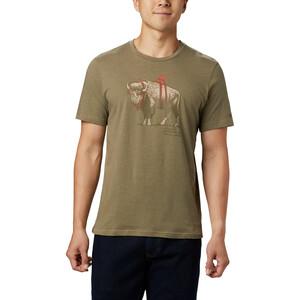 Columbia Piney Falls Graphic T-Shirt Herren sage sharkalo sage sharkalo