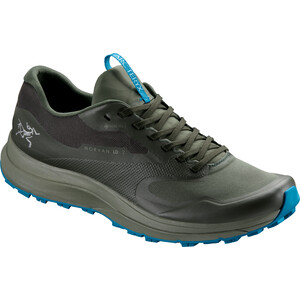 Arc'teryx Norvan LD 2 GTX Shoes Herr hydroponic/spiral hydroponic/spiral