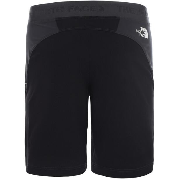 The North Face Impendor Alpine Shorts Herren asphalt grey/tnf black