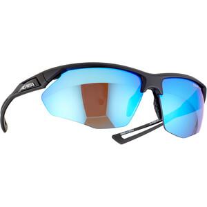 Alpina Nylos HR Cykelbriller, sort sort