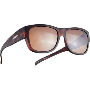 Alpina Overview II P Gafas, negro/marrón negro/marrón