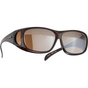 Alpina Sunglasses Overview, negro/marrón negro/marrón