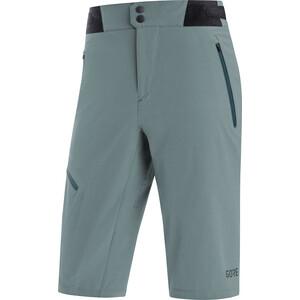 GORE WEAR C5 Shorts Herrer, nordic blue nordic blue