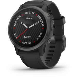 Garmin Fenix 6S Sapphire Multisport GPS Smartwatch grau grau
