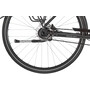 Ortler Perigor Pinion 9-speed Trapeze magic black matt