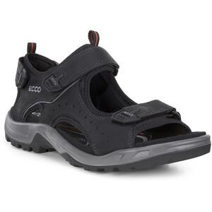 ECCO Andes II Sandalen Herren schwarz schwarz