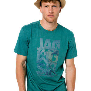 Jack Wolfskin Atlantic Ocean T-Shirt Herren emerald green emerald green
