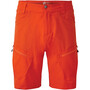 Dare 2b Tuned In II Shorts Herren orange