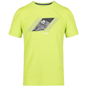 Regatta Fingal V T-Shirt Herren electric lime electric lime