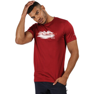 Regatta Fingal V T-Shirt Herren delhi red delhi red