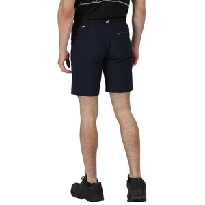 Regatta Xert III Stretch Shorts Herren black black