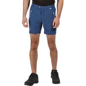Regatta Mountain Shorts Herren dark denim dark denim