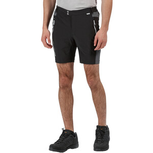 Regatta Mountain Shorts Men, black/magnet black/magnet