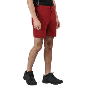 Regatta Highton Mid Shorts Herren delhi red delhi red