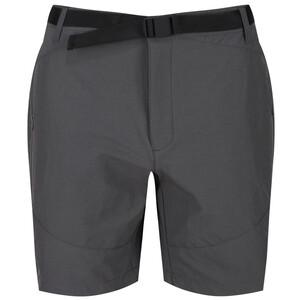 Regatta Highton Mid Shorts Herren grau grau