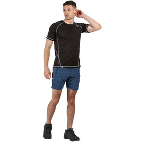 Regatta Sungari II Shorts Herren dark denim dark denim