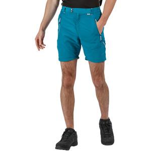 Regatta Sungari II Shorts Herren olympic/gulfstream olympic/gulfstream