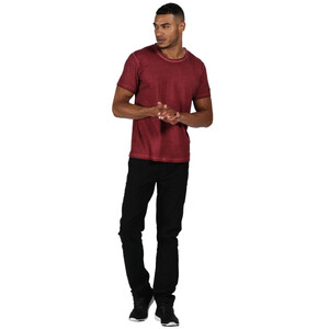 Regatta Calmon T-Shirt Herren delhi red delhi red