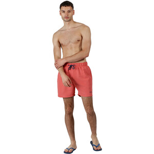 Regatta Mawson Swim Shorts Men spice spice