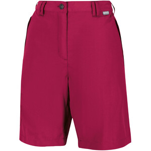 Regatta Chaska II Shorts Women, punainen punainen