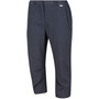 Regatta Chaska II Capris Damen seal grey