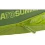 Sea to Summit Ascent AC II Schlafsack Regular grün