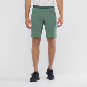 Salomon Wayfarer Pull On Shorts Herren balsam green balsam green