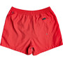 Quiksilver Everyday Volley 15 Shorts Heren, rood