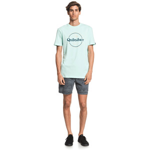 Quiksilver Words Remain Kurzarm T-Shirt Herren beach glass beach glass