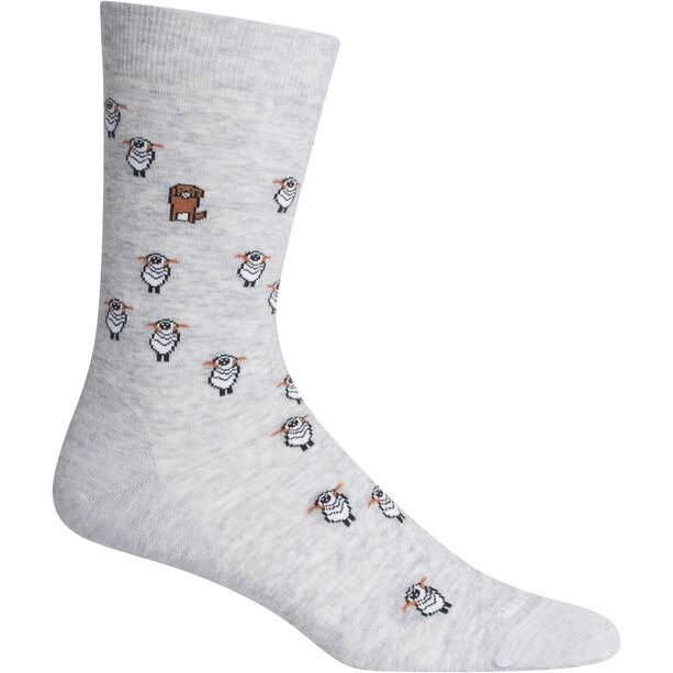 Icebreaker Lifestyle Fine Gauge Socken blizzard