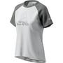 Zimtstern PureFlowz Kurzarmshirt Damen glacier grey/gun metal/blush