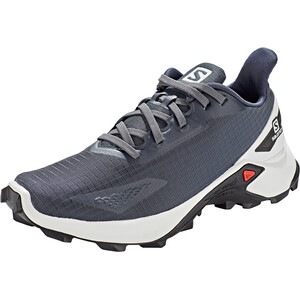 Salomon Alphacross Blast Schuhe Damen grau/weiß grau/weiß
