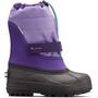 emperor/paisley purple