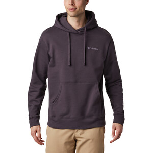 Columbia Viewmont II Sleeve Graphic Hoodie Herren dark purple/shale purple dark purple/shale purple