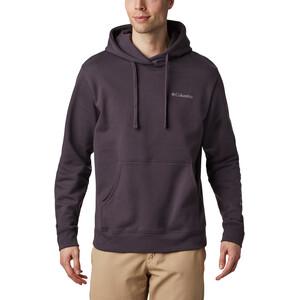 Columbia Viewmont II Sleeve Graphic Hoodie Herren dark purple/shale purple dark purple/shale purple