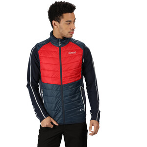 Regatta Halton IV Hybrid Bodywarmer Weste Herren nightfall navy/true red/nightfall navy nightfall navy/true red/nightfall navy